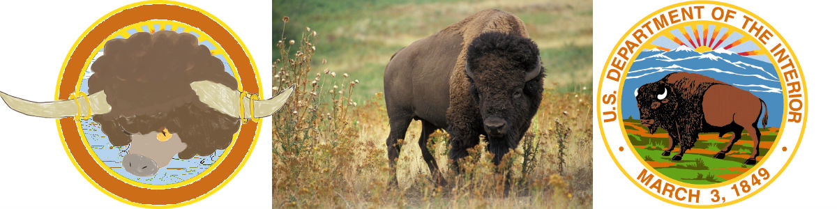Bouffalant head, bison, Interior seal, all in a row