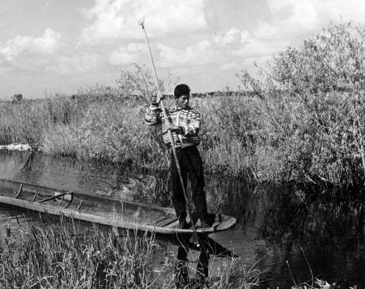 Black and white photo of a young man standing up in a boat and paddling through a swamp.