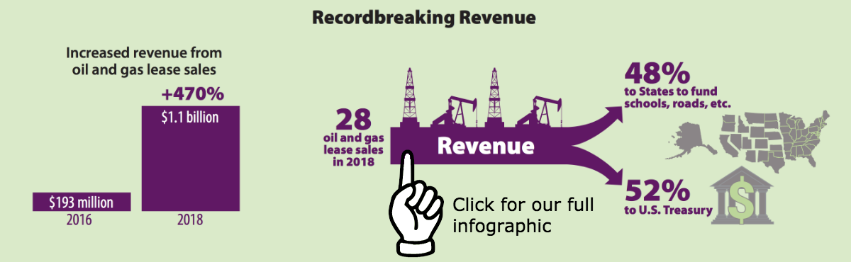 Recordbreaking revenue, a teaser graphic to the accessible PDF.