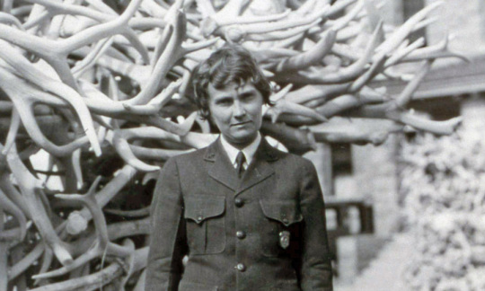 Historic black and white photo of a woman in a National Park Service uniform standing in front of a large pile or elk antlers.