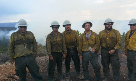 Firefighters standing in burned forest