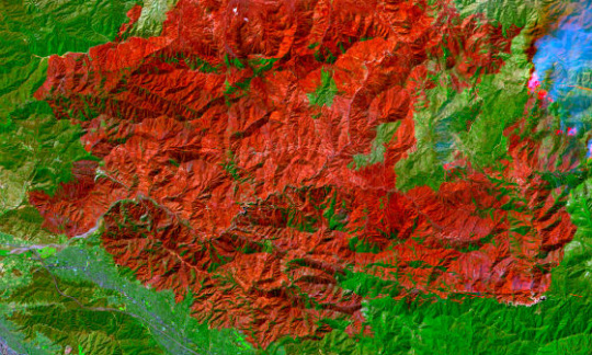 Landsat image in red and green