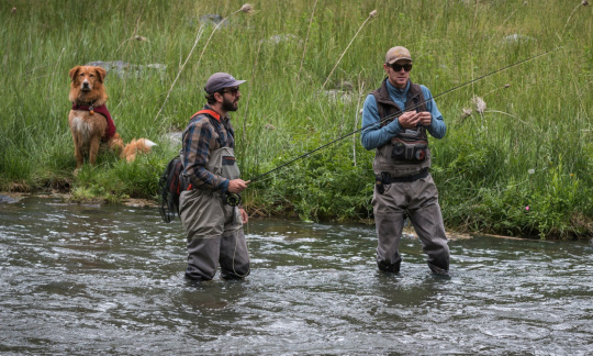 Two men wearing waders fish in a shallow river as a dog watches from the grassy riverbank.
