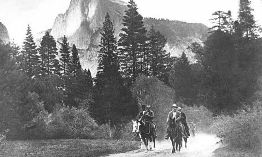 Teddy Roosevelt and John Muir riding horses