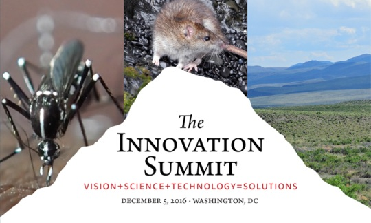 Innovation Summit Report