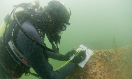 Underwater diver takes notes beneath Lake Mead.