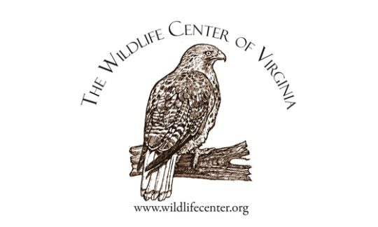 Wildlife Center of Virginia