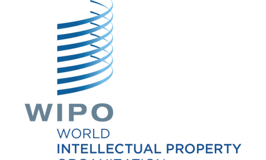 Seminar on Intellectual Property and Traditional Cultural Expressions