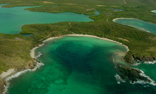 An aerial view of blue water, green forests and sandy beaches at Vieques National Wildlife Refuge in Puerto Rico
