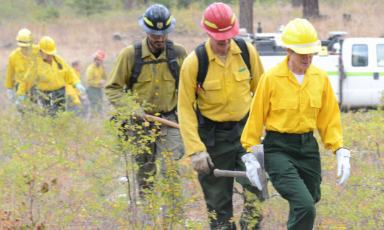Secretary Jewell and several wildland firefighters walking through the forest with firefighting gear.