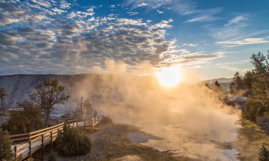 Sunlight streams through steam rising from a hot spring bordered by trees and a boardwalk.