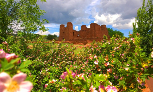 The ruins of a large red brick building stand in a field bordered by bright pink flowers.
