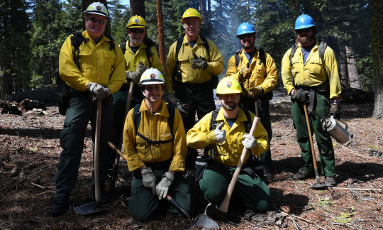 Seven men in yellow uniforms and hardhats pose for a picture in a forest