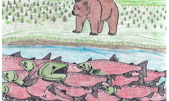 Bear and salmon drawing