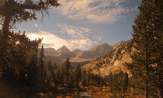 The gorgeous landscape of mountains and trees in Sequoia National Park in California