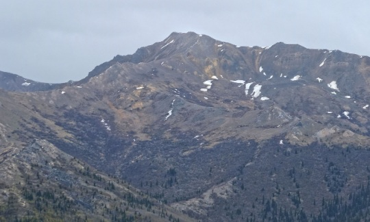 A large mountain with many trees and a little snow stands in a gray day
