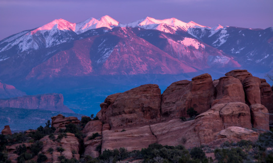 Snow capped mountains glow purple in the setting sun with knobby sandstone rocks in the foreground.