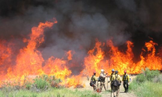 A group of firefighters wearing protective gear stand in front of a raging wildfire and smoke clouds.