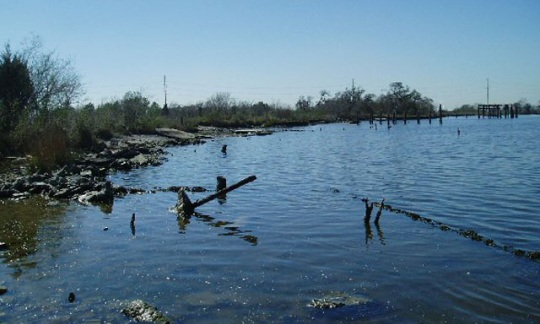 coastal habitat at Baytown Nature Center, near Baytown, Texas