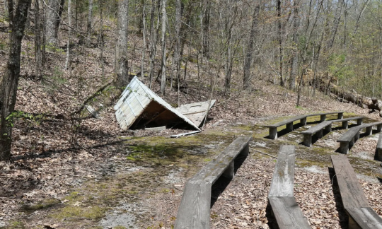 A small collapsed wooden building lays on the edge of the woods with line of benches in front of it.
