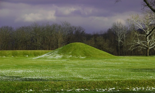 A mound in the grass on an overcast day