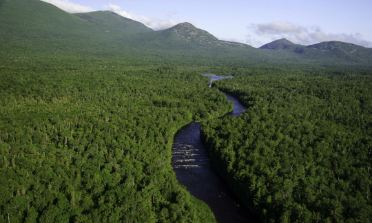 A blue river winds through a deep green forest with rolling mountains in the distance.