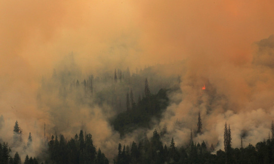 Smoke and flame roll up a mountainside covered in trees.