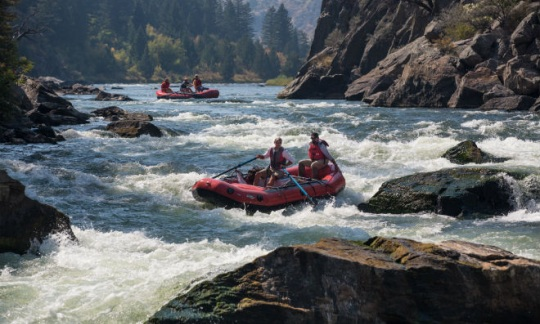 People in red rubber rafts paddle around rocks and through white water on a river running by a rock canyon wall.