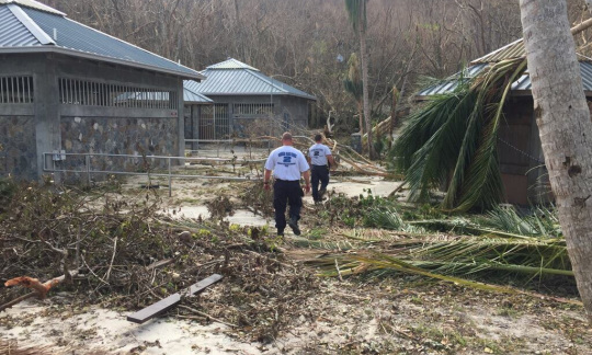 Two rescue workers walk by damaged buildings and fallen trees.