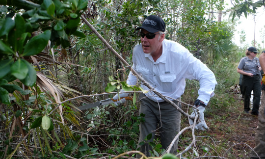 Secretary Zinke holding a small saw and clearing underbrush from a swampy roadside.