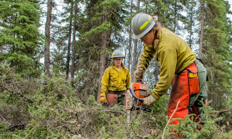 Working in Wildland Fire | U S  Department of the Interior