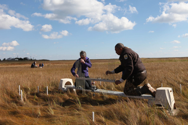 Secretary Sally Jewell visits Edwin B. Forsythe National Wildlife Refuge in New Jersey