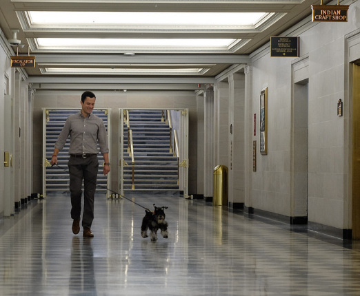 Man in gray shirt holding a white and gray terrier by a leash walks through corridor