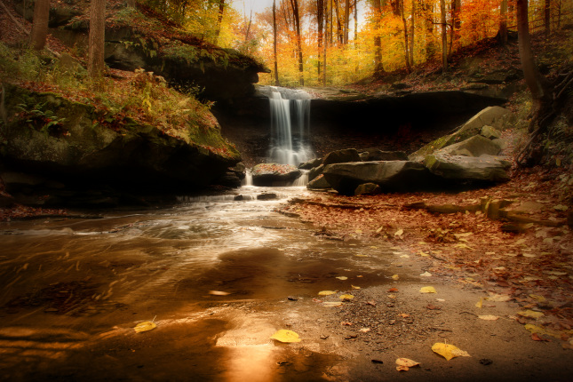 A waterfall flows over a rock wall and down a narrow stream in a forest in autumn.