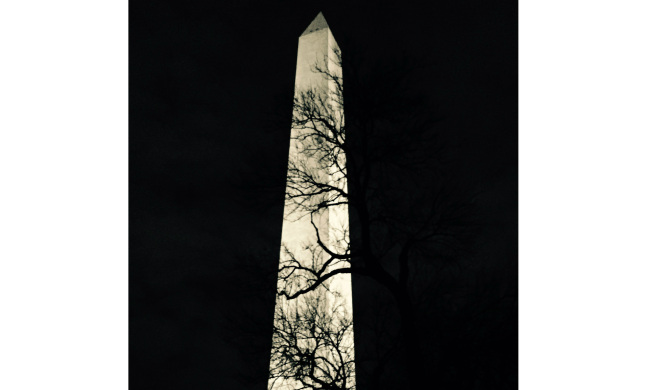 The tall white column of the Washington Monument is seen through tree branches at night.
