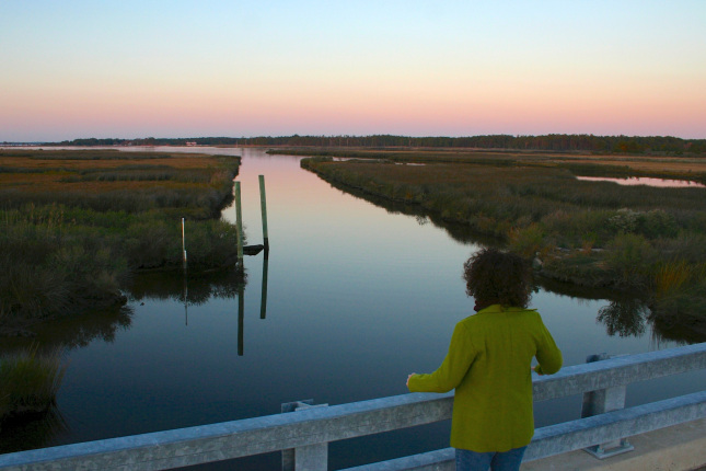 A woman stands on a footbridge overlooking a canal running through a grassy wetland at sunset.