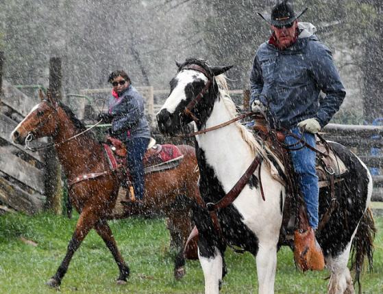 As the rain falls Secretary Zinke rides a white and brown horse while a woman near him rides a tan horse