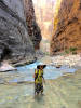 A child wearing a floppy hat and holding a walking stick stands in a stream running through a narrow canyon.