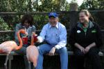 Secretary Salazar feeds flamingos at the San Diego Zoo