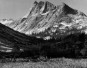 Big Bird Peak, Deadman Canyon, Kings Canyon National Park California Ansel Adams National Archives no. 79-AAH-25
