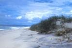 Assateague Island NS