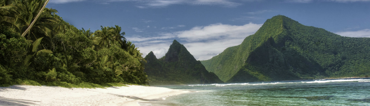 A beach with green mountains and a patch of lush greenery