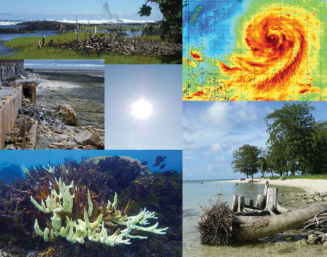Collage of Images with Beach, Coral Reef