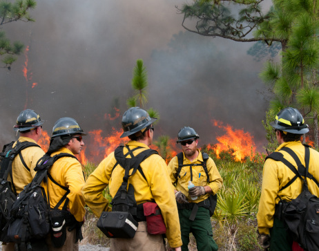 Fiefighters fight wildfire in Florida.