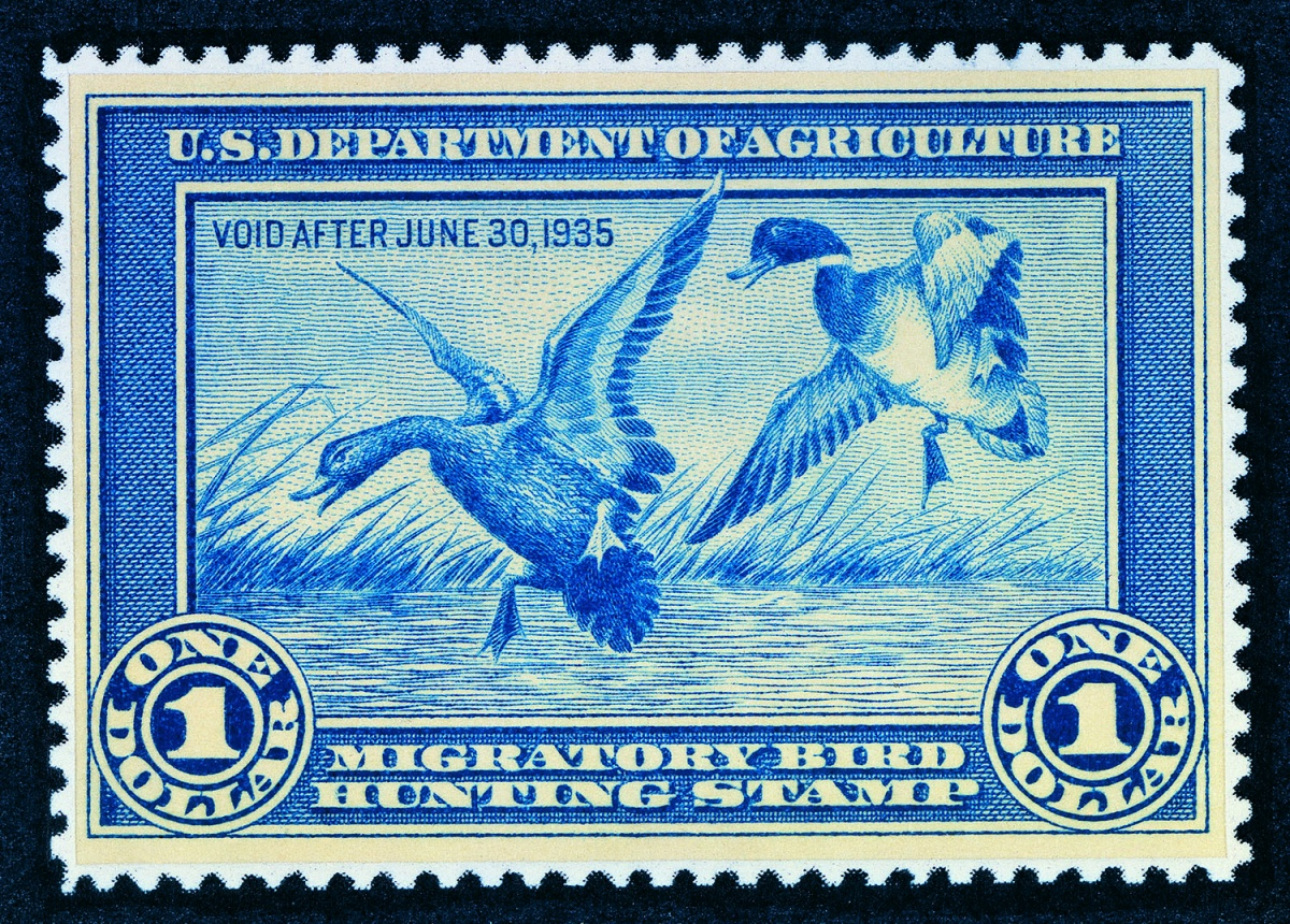 Two ducks land in a small pond on the 1935 Migratory Bird Hunting Stamp.