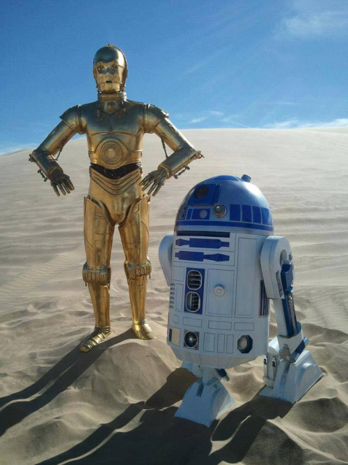 A golden, man-like robot and a short, blue and white robot stand in sand dunes with a blue sky behind them.
