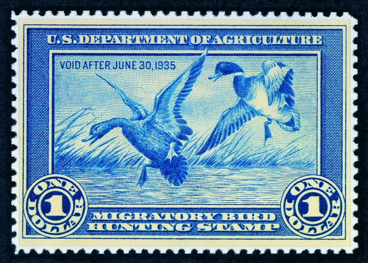 Two ducks land in the water on the blue and white 1935 Migratory Bird Stamp