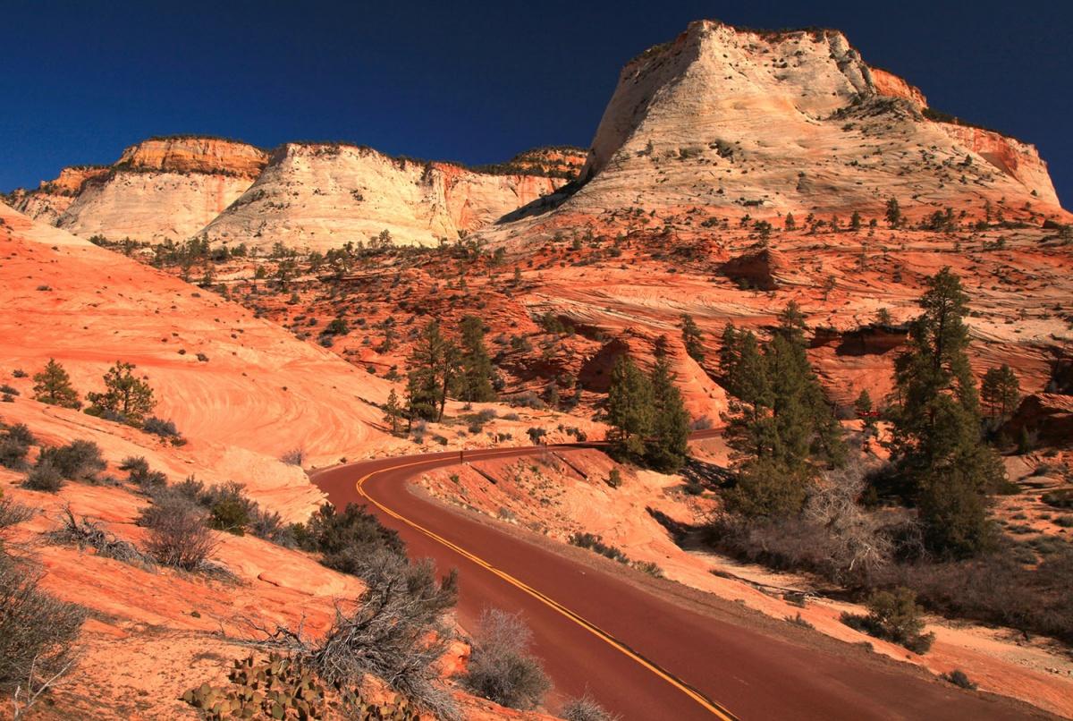 Road Winding Through Red Rocks