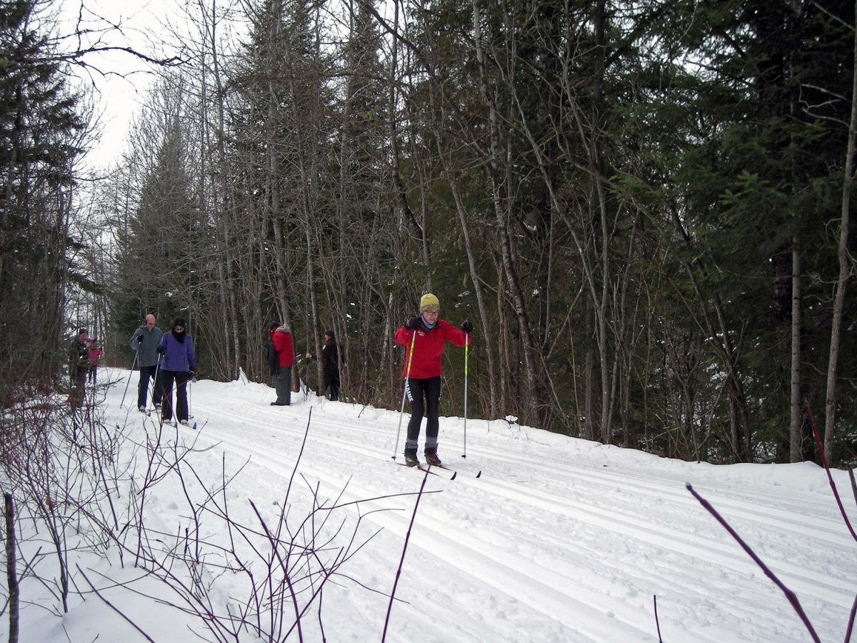 Four people wearing winter clothes ski down a snow covered path running through thick woods.