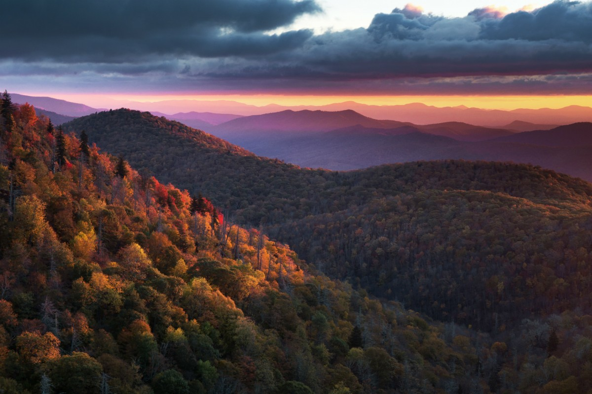 Rolling mountains covered with trees showing their fall colors stretch out to the horizon under a pink sunset sky.